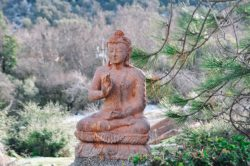 Vedanta Spiritual & Holistic Retreat is soothing, peaceful, and magical energy. It's an ideal place for healing, nurturing, growing, and empowering.